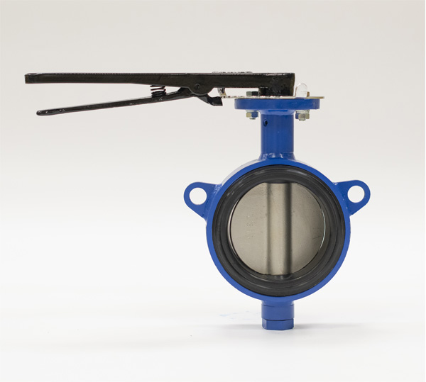Valves with elastoplastic cup